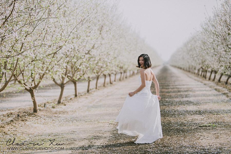 Arvin_Almond_Blossom_Poppy_Filed-12