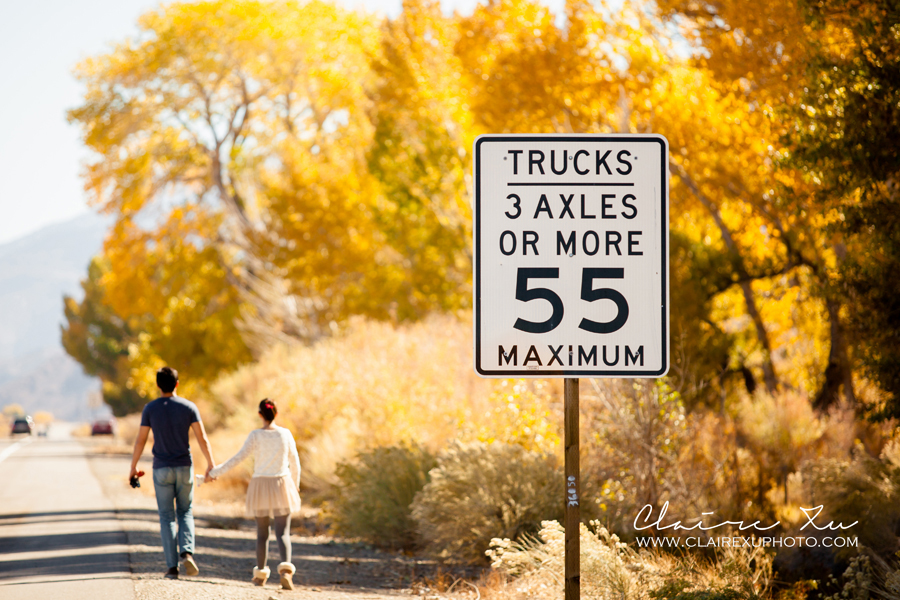 Eastern_Sierra_Fall_Freeway_395_Engagement-25