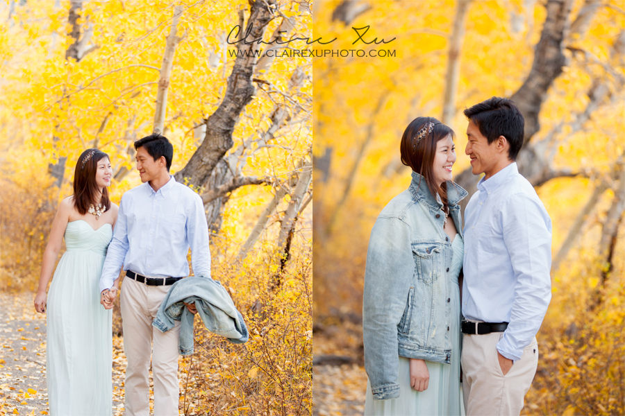 Eastern_Sierra_Fall_Mammoth_Lake_Engagement-15