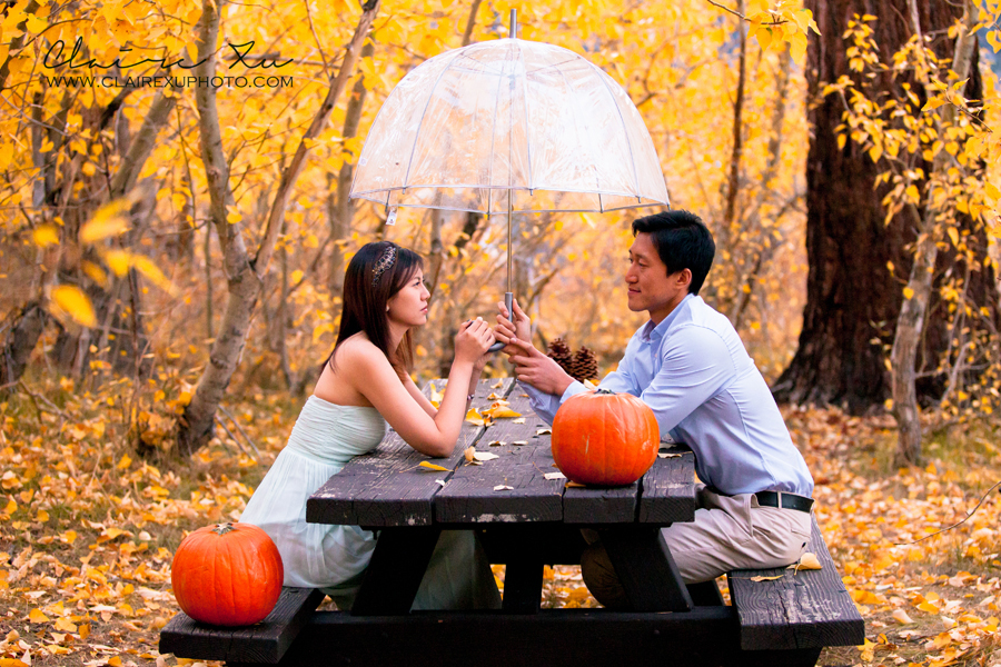 Eastern_Sierra_Fall_Mammoth_Lake_Engagement-22