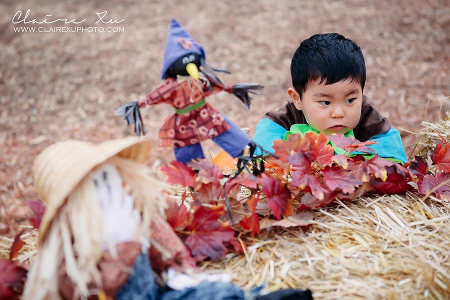 Thousand_Oaks_Pumpkin_Patch-8427-s