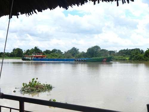 Vietnam Claironyva Cu CHi