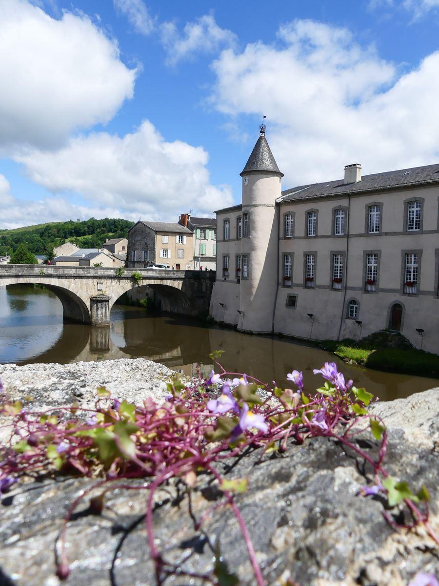 Tarn Brassac vue du vieux pont