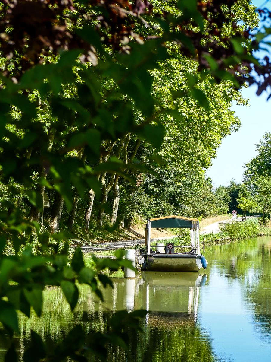 balade sur le Canal du Midi