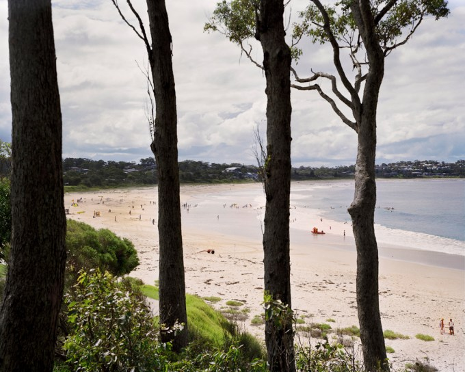 Amy Stein, Tree Line, Mollymook