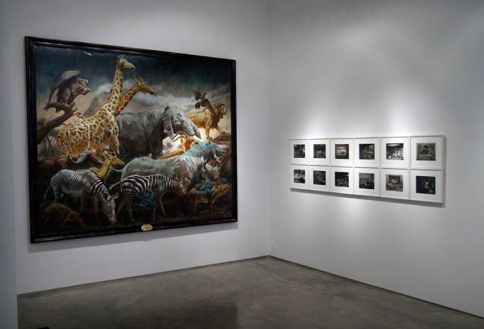 Museum of Unnatural History Installation
