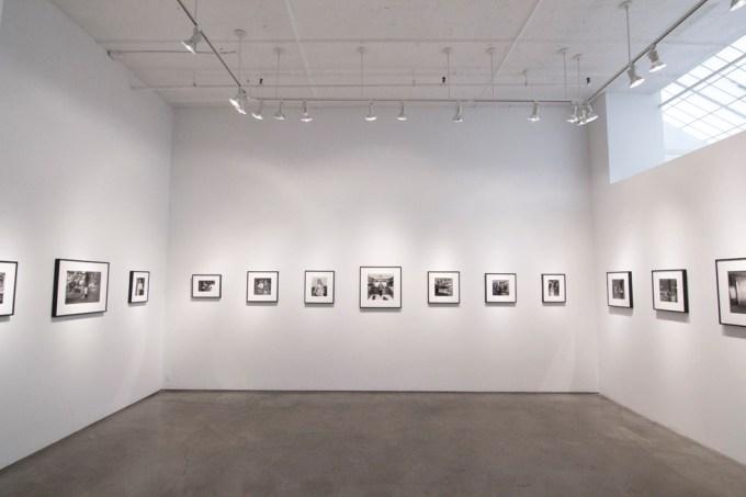 Henry Horenstein, Histories, Installation 2