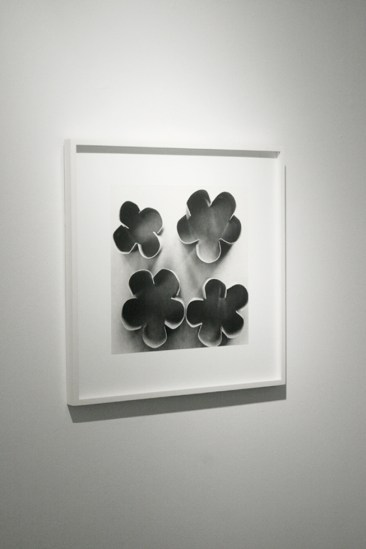 Ion Zupcu, New works on paper, installation image 7