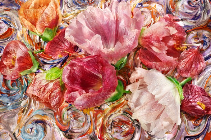 David Bishop, Edible Flowers: Hollyhock.2