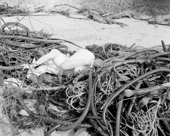 Margaret Kristensen, Seaweed