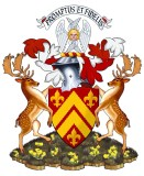 chiefs arms with mantling red and silver