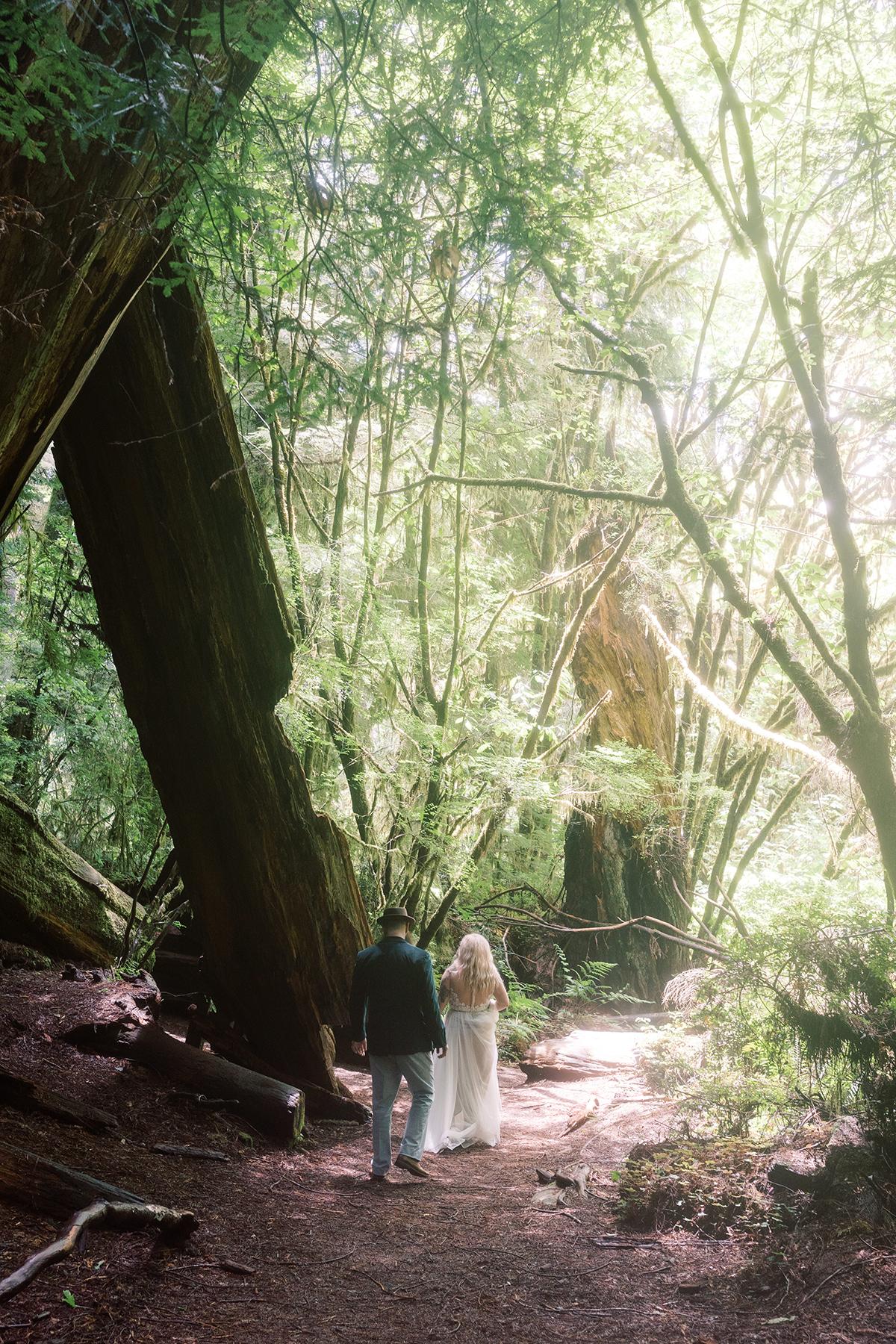 Prairie-Creek-Redwoods-State-Park-wedding-elopement-photos-10
