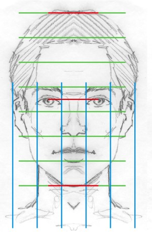 Facial Proportions | TwentyFirst Century Art and Design