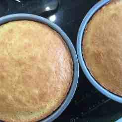 victoria sponge cakes in baking tins
