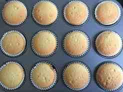 baked cupcake sponges