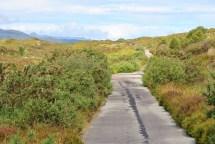 Old Sleat Road Walk (7)