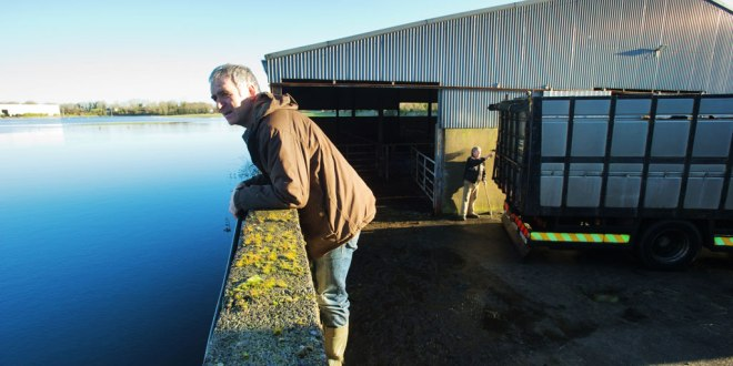 John Nolan watches the flooding as it rises over his farm at Corker, Kiltartan. In the background, haulier Michael Lynskey locks up John's cattle in a truck for evacuation from the slatted house before the water comes in.