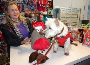I'd really like that robin from Santa.