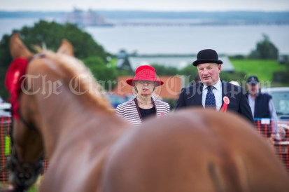 Judges Joan Mahon and Phillip Copithorne eye up the entries at Kildysart Show. Photograph by John Kelly