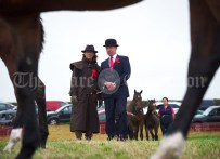Judges Marie Byrne and Tim Wilson assess the situation in the ring at Kildysart Show. Photograph by John Kelly