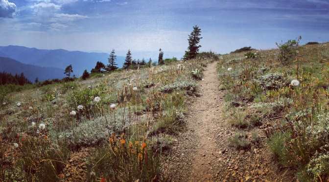 PCT Days 101-118: Finishing California