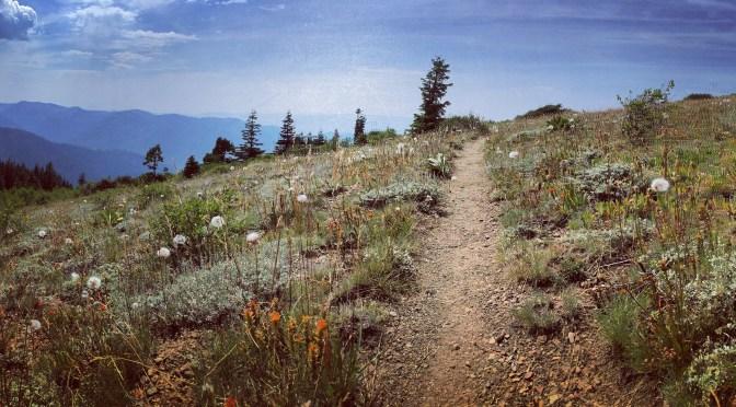 PCT Days 101-118: Finishing California