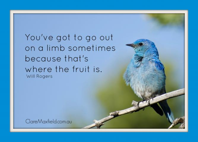 You've got to go out on a limb sometimes to find the fruit