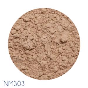 NM303
