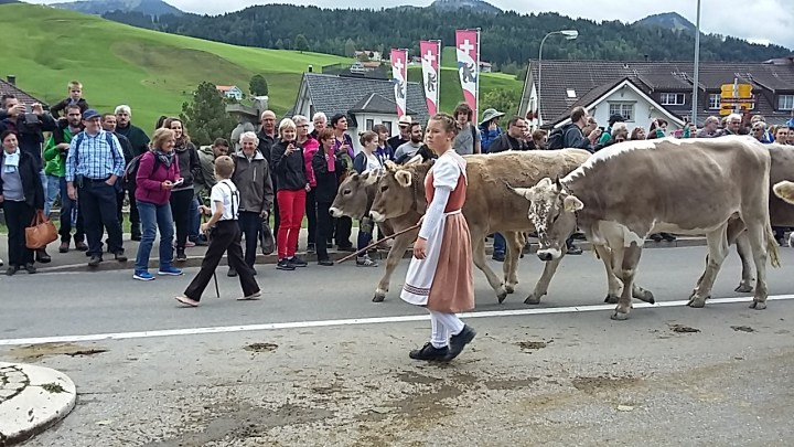 Appenzell – the final frontier