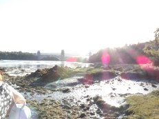 The Menai shore and view of the Britannia Bridge on a sunny afternoon