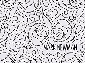 My Fence is Electric by Mark Newman