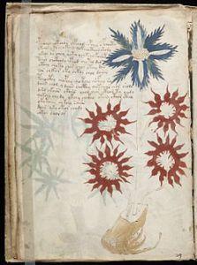 Voynich_Manuscript_(page 32)