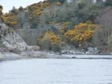 spot the angler