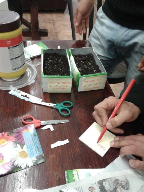 rotulando-semilleros