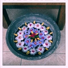 a bowl of flowers (c) Clarice Fong