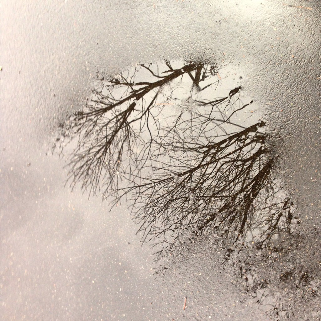 Picture taken in the rain of a puddle on the street