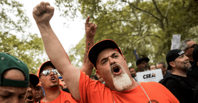 AP: Unions Worry 2020 Democrats Ignoring 'Kitchen-Table Economics' for Divisive Far-Left Issues