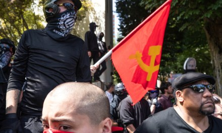 Antifa flooded the office of an ICE union lawyer: 'For the free movement of all people. Smash ICE'