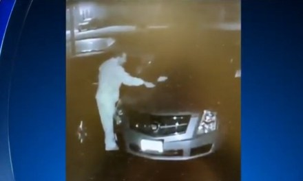 Vandal calling himself 'The Code Enforcer' wanted in New Jersey for keying cars, slashing tires of people with 'untidy' yards