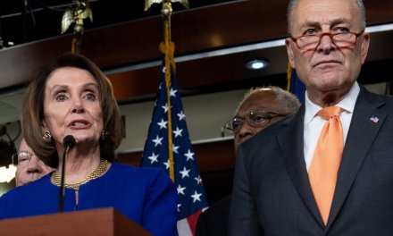 WTF MSM!? Media rush to Nancy Pelosi and Chuck Schumer's defense