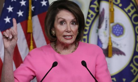 Nancy Pelosi slams President Trump's 'merit-based' immigration plan, then takes a jab at first lady's parents who immigrated to US