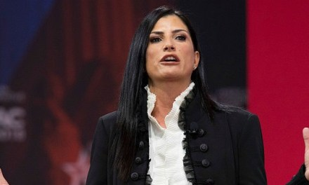 Dana Loesch: Modern-Day Book Burners 'Have No Idea What Real Fascism Is'