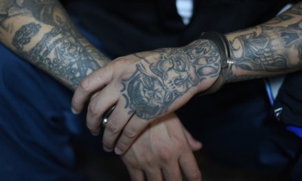 Judge goes easy on illegal alien MS-13 gang member convicted of a 'horrific frenzy of violence'