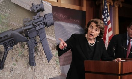 Dianne Feinstein wants people to believe that AR-15s are bad for hunting and home defense