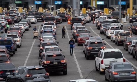NY county clerks refuse to follow new law giving driver's licenses to illegal immigrants