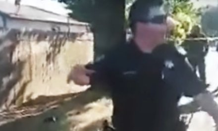 Bystanders in California neighborhood taunt, threaten police at scene of fatal shooting of female officer