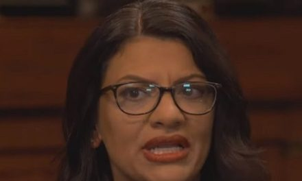 Tlaib to Pelosi: 'Acknowledge the Fact That We Are Women of Color — So When You Do Single Us Out, Be Aware of That'   Breitbart