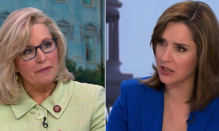 WATCH: Liz Cheney confronts 'Face the Nation' host over anti-Trump media bias