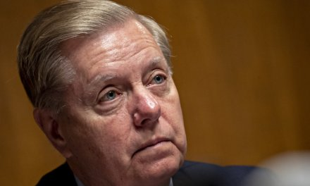 Lindsey Graham reiterates support for red-flag gun laws: '2nd Amendment is not a suicide pact'