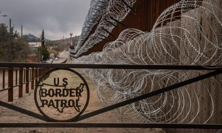Border Patrol Agents Open Up Tractor Trailer, Find Over 70 Illegal Aliens Inside